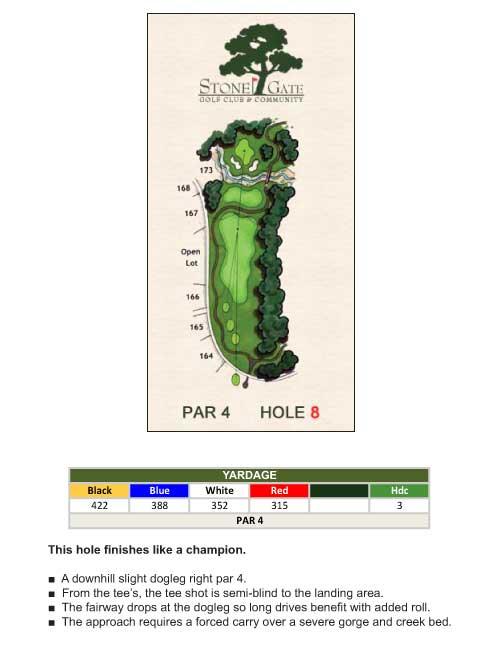 hole-8